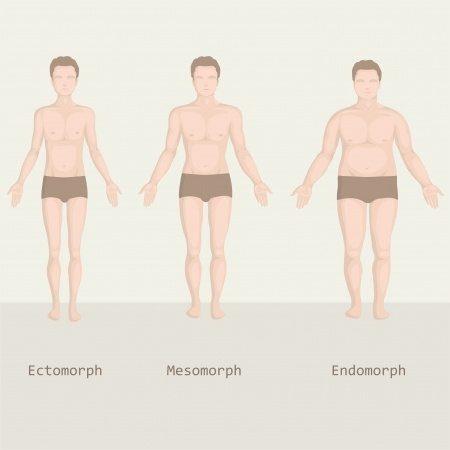súlycsökkenés meghatározott testtípusokhoz 40-es években nem tud fogyni