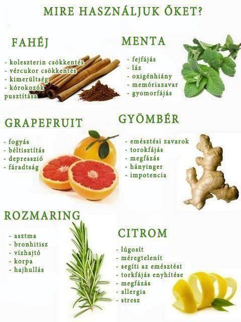 fogyni gyógynövényekkel