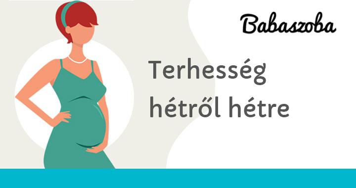 fogyás 28 hetes terhes