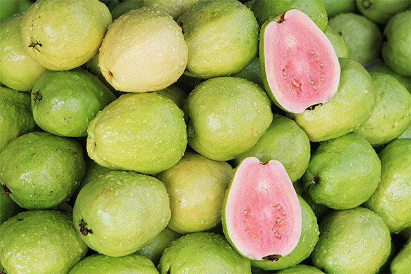 Fat-Out guava kivonat-70RON tabletta!