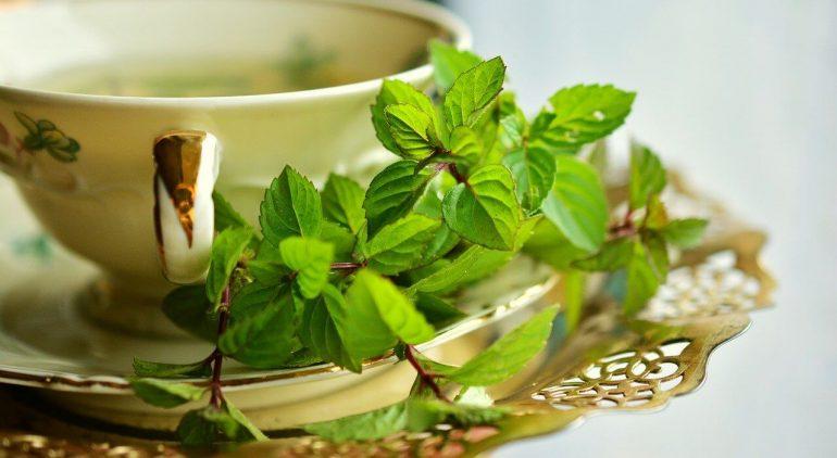 A 10 legjobb zsírégető gyógynövény - Fogyókúra | Femina