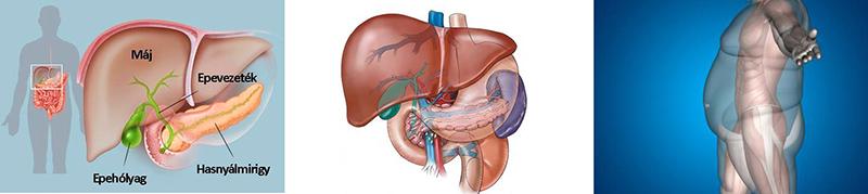 javítja-e a fogyás az asztmát? fogyás szájfény