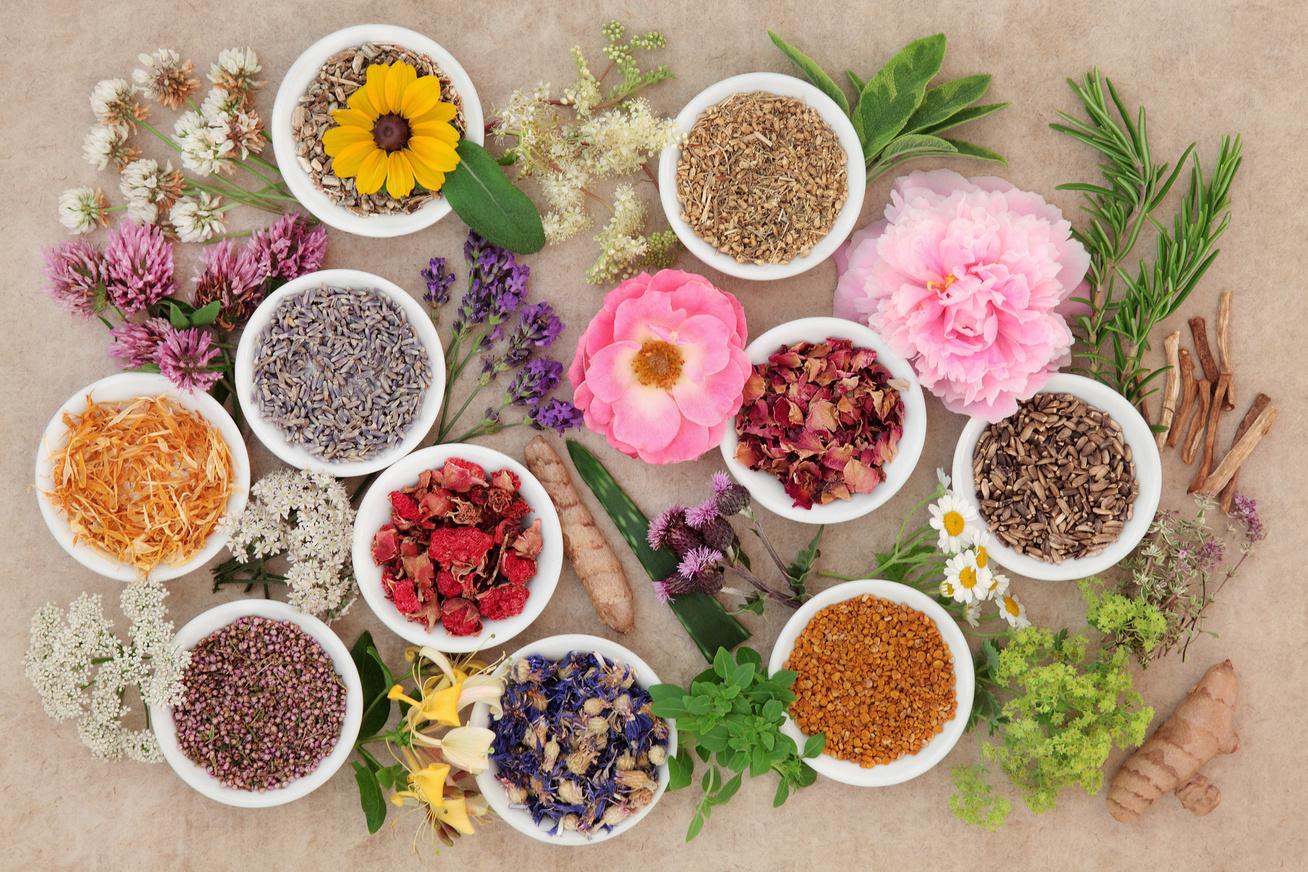 a gyógynövények segítenek a fogyásban