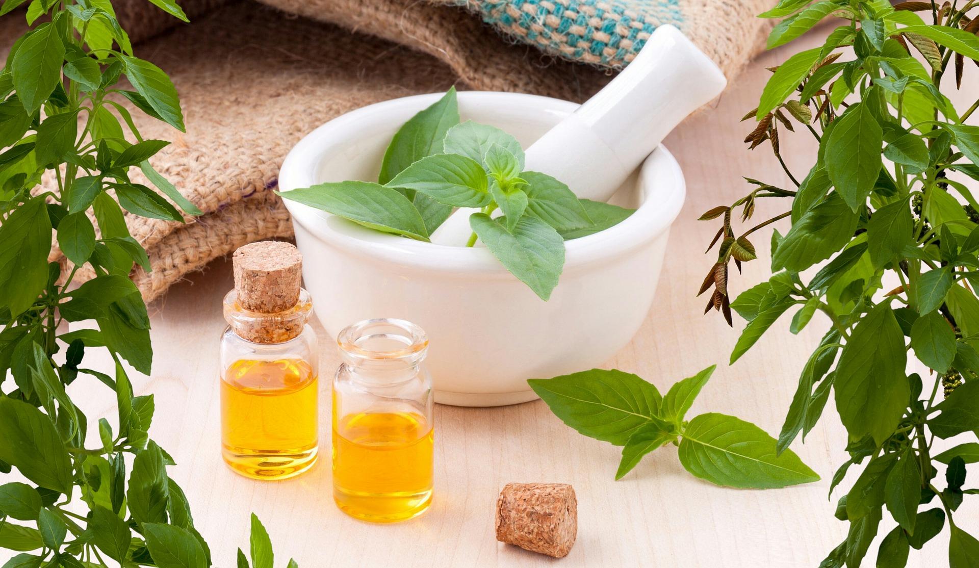 természetes gyógynövények a fogyás növelése érdekében hidegben alvás lefogy