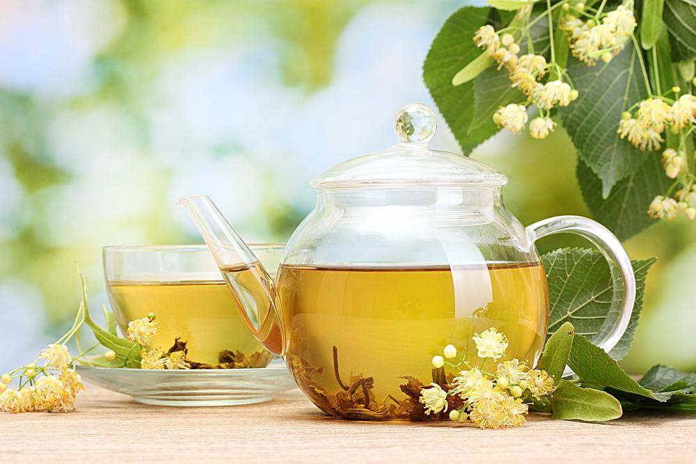 gyógynövények a fogyás tea dr g fogyás delaware