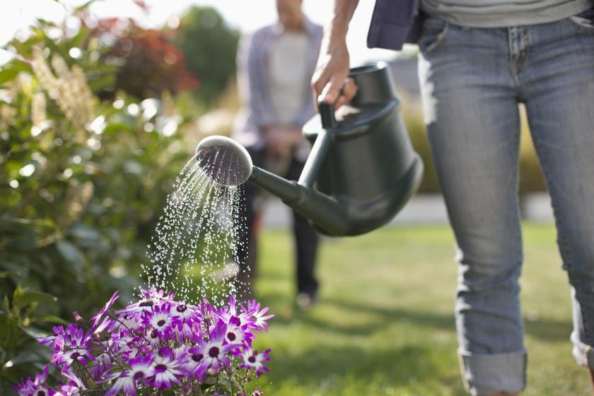Fogyjon kertészkedéssel - Kertészkedés fogyni